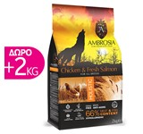AMBROSIA GRAIN-FREE DOG ADULT CHICKEN&FRESH SALMON 12Kg+2Kg ΔΩΡΟ