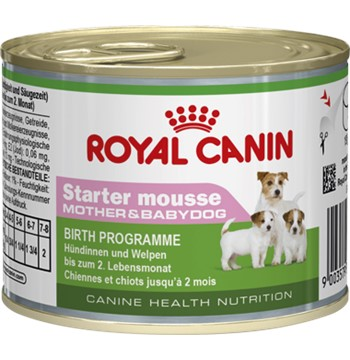 ROYAL CANIN STARTER MOUSSE CAN 12X195GR