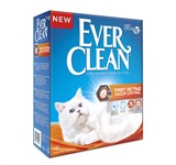 EVERCLEAN FAST ACTING 6LT